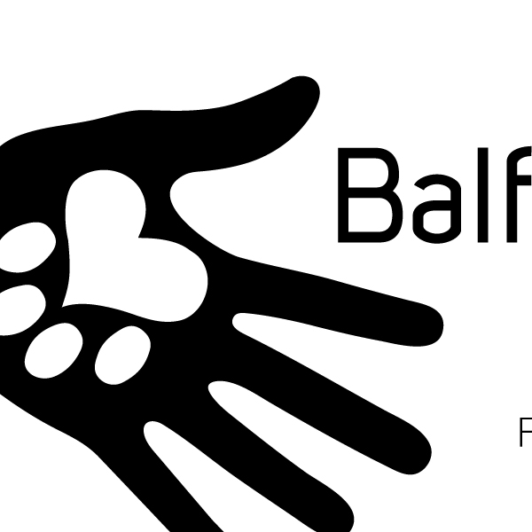 Balfour's Friends Foundation